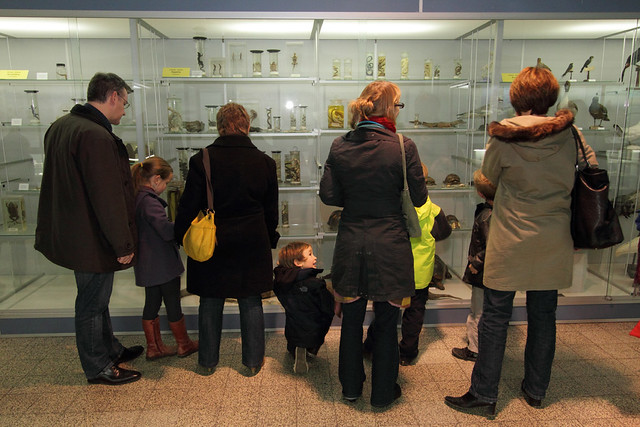 Dag van de Wetenschap - Museum voor Dierkunde