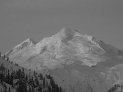 Mt Ann 113