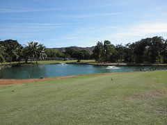 Ala Wai Golf Course 035