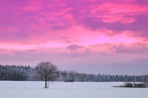 morning winter nature landscape december latvia heavan aivis stracinskis