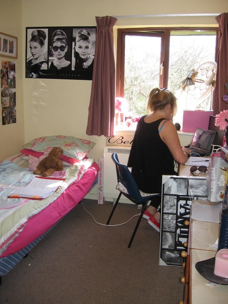 Hendrefoelan Student Village Student Room