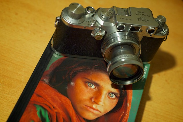 339/366: Leica McCurry
