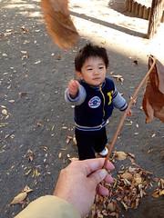 恵比寿公園にて大きな葉っぱでチャンバラ 2012/12/9