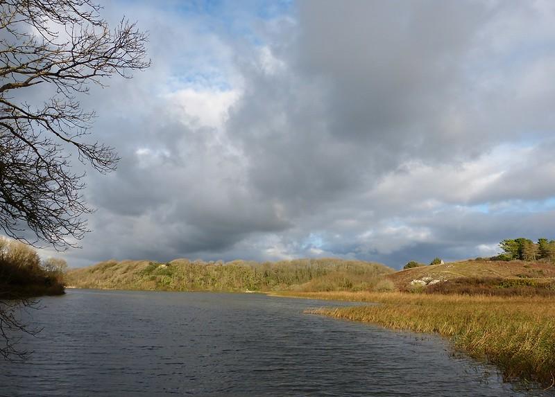 29034 - Bosherston Lily Ponds