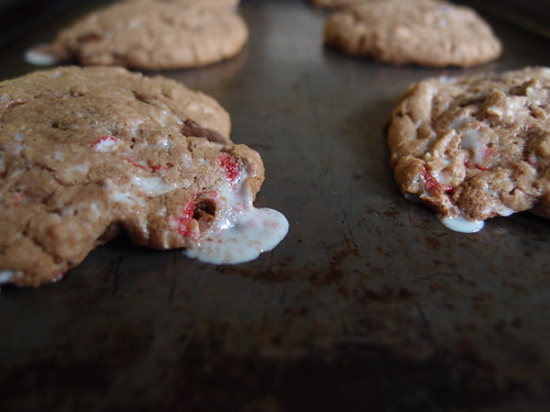 Candy Cane Nutella Chocolate Chip Cookies