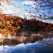 Price Lake Sunrise Between the Leaves by Photomatt28