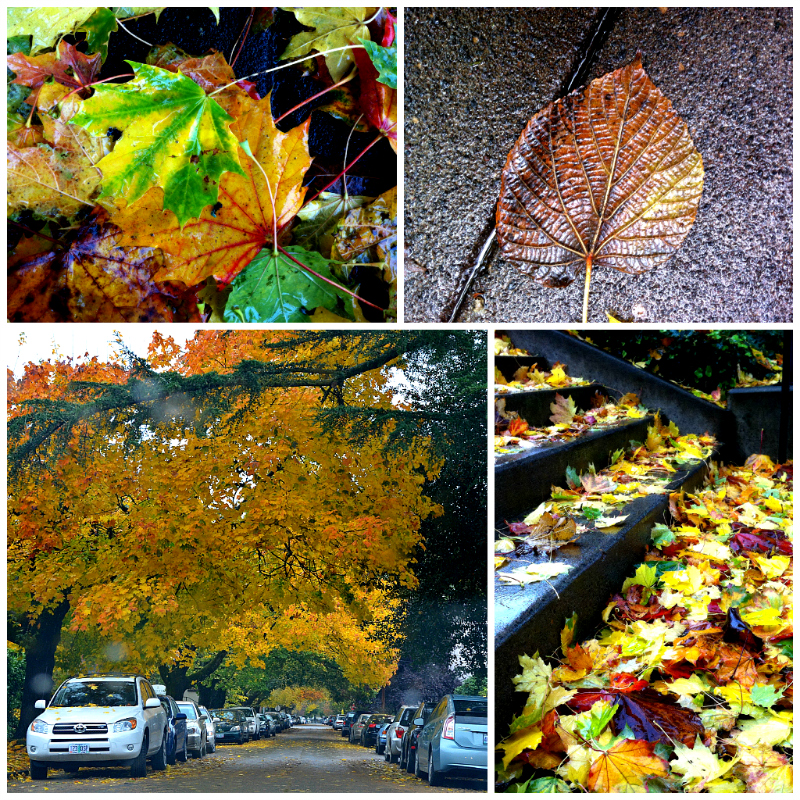 PicMonkey Collage_fall_leaves_2