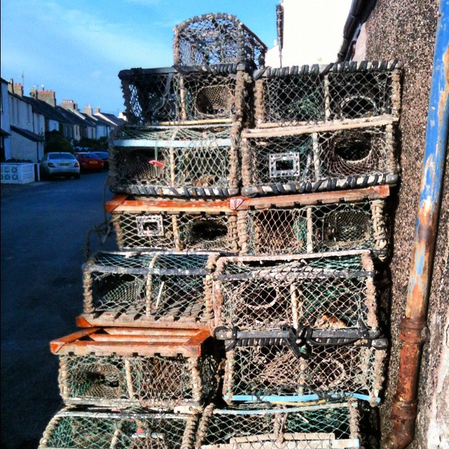 lobster pots how to use