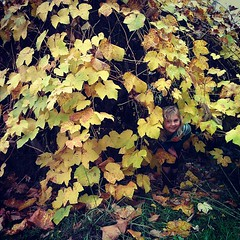 Grape arbors make good hiding spots.