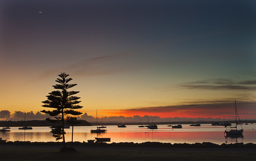 red orange moon tree water sunrise boats dawn bay still view postcard picture calm crescent queensland moreton