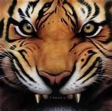 Harimau 1