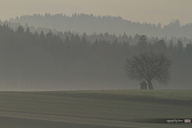 the_fool_on_the_hill_in_morning_fog
