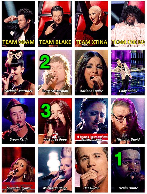 My Votes: The Voice - Top 3