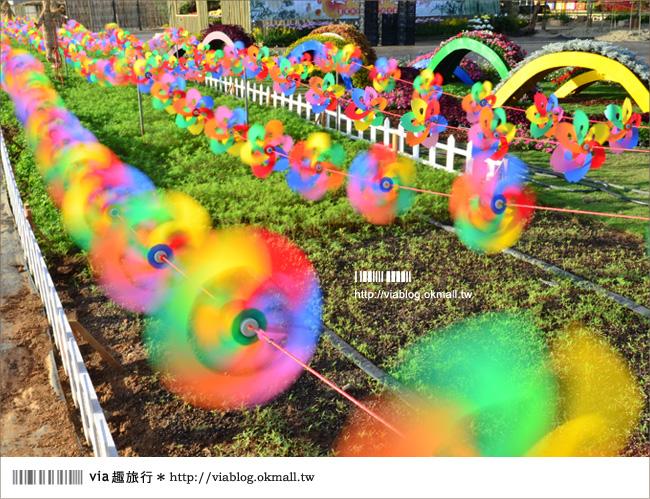 【新社花海2012】2012新社花海節活動介紹及交通資訊8-9