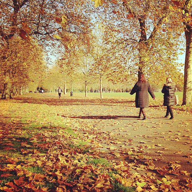Header of A walk in the park
