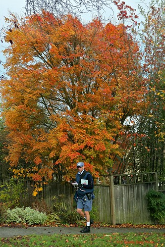 Postal Carrier in Autumn by Seattle Daily Photo
