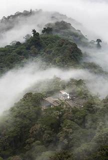 02 Mashpi Lodge, Arq. Alfredo Rivadeneira, Mindo-Ecuador