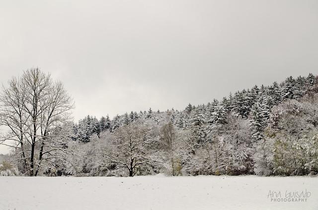 Primeras nieves