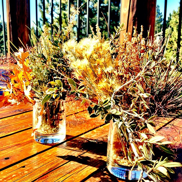 Foraged centerpieces.