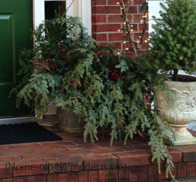 evergreens in swedish bucket via homeologymodernvintage.com
