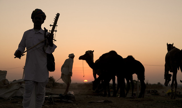 Pushkar Fair Sunset