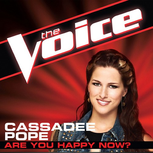 #nowplaying @cassadeepopemusic Are you happy now? Yes! #thevoice by stevegarfield