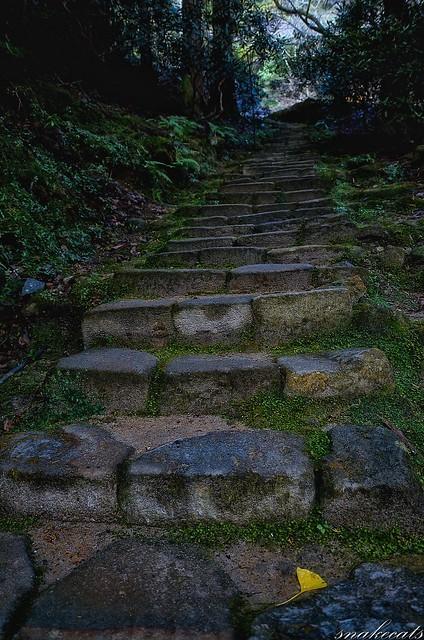 「一枚」 室生寺 - 奈良