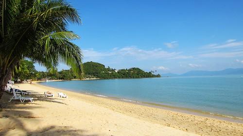 Koh Samui Samui Palm Beach Resort サムイパームビーチリゾート (5)