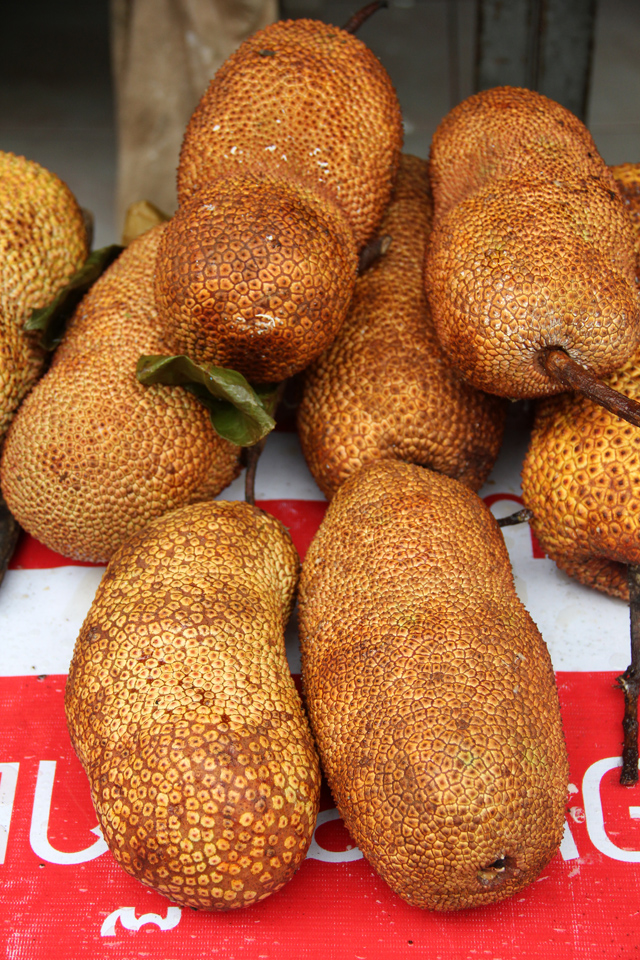 8262355547 0085d79c7d o Exotic Fruit: Southeast Asian Cempedak