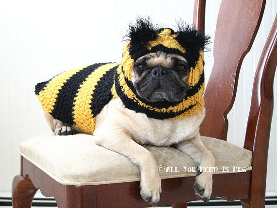 beesweater