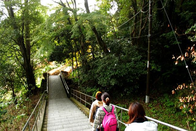 20121201_鋸山_0060
