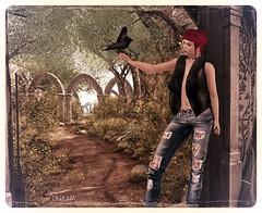 Le Corbeau et La Belle