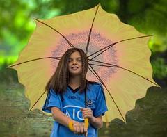 Umbrella . . .