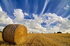 [Free Images] Nature, Field / Farm, Clouds, Landscape - United Kingdom ID:201211091600