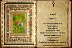 Evangelio según San Lucas 18,35-43. Obra Padre Cotallo
