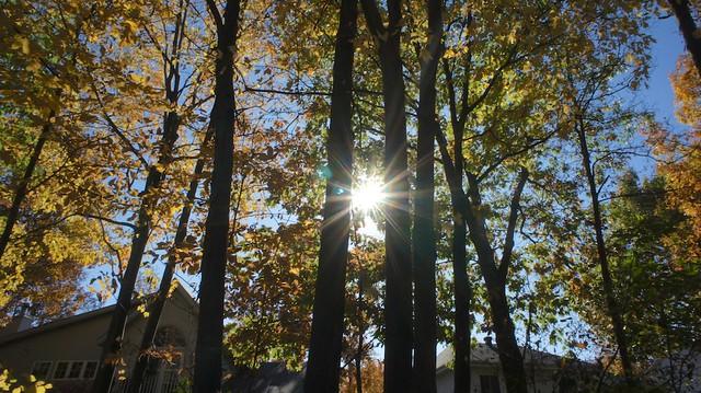 anteketborka.blogspot.com, étoile337