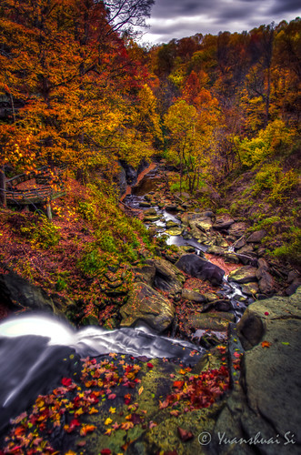 longexposure autumn fall forest river cleveland valley fallingleaves hdr topview cuyahogavalleynationalpark brandywinefalls colorfulseason pentaxk5 yuanshuaisi pentax15mmf4 dashuaiphotography
