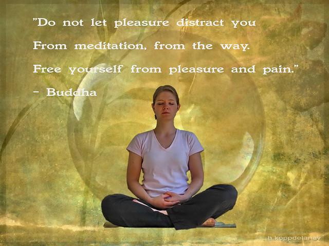 Buddha Quotes VI