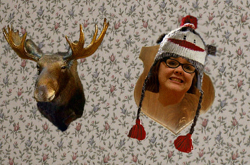 Your head in a sock monkey hat mounted like a hunting trophy on a wall next to a taxidermy moose head.