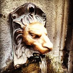 #Buxton St.Ann's Well