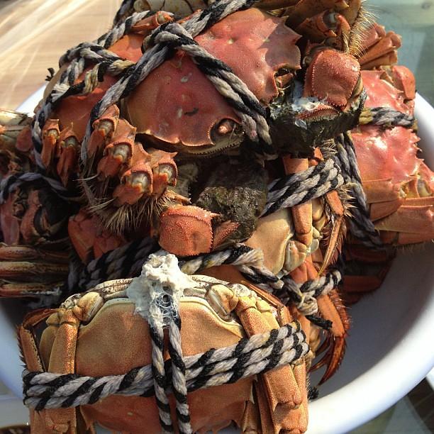 螃蟹上桌!!! #吃货沙