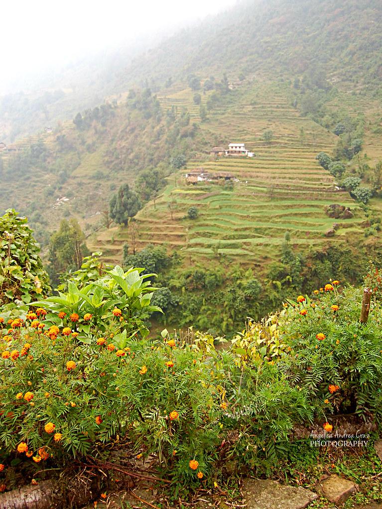 Landruk Annapurna Sanctuary Trek