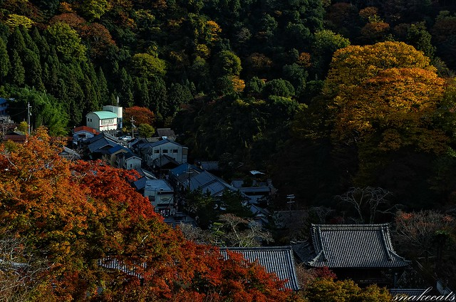 「紅葉の里」 長谷寺 - 奈良