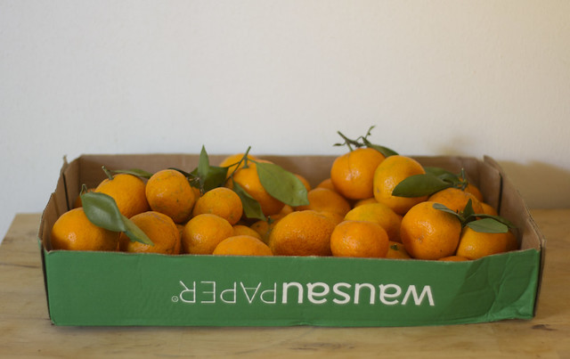 box o' oranges