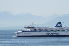 ferry, motor ship, vehicle, ship, sea, ocean, passenger ship, cruise ship, watercraft, boat,