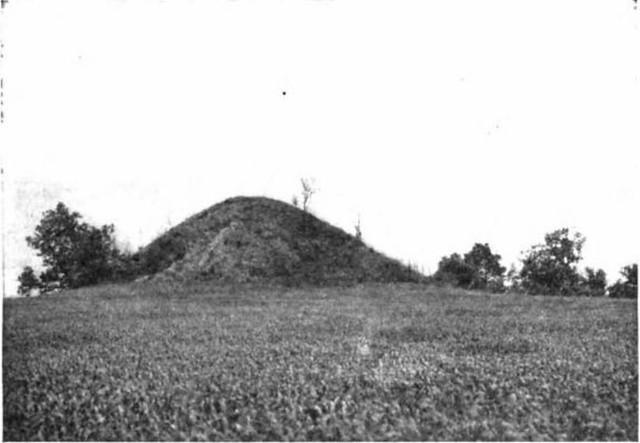 Forest Park_mound2