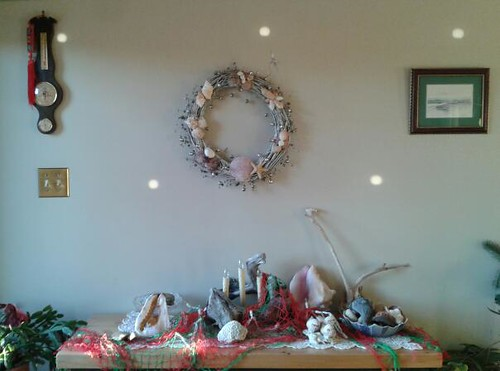 Christmas seashell display by scosborne