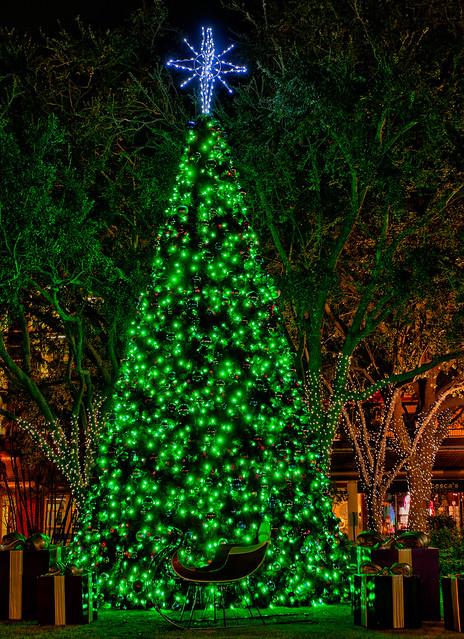 Hyde Park Village Christmas Tree Flickr Photo Sharing