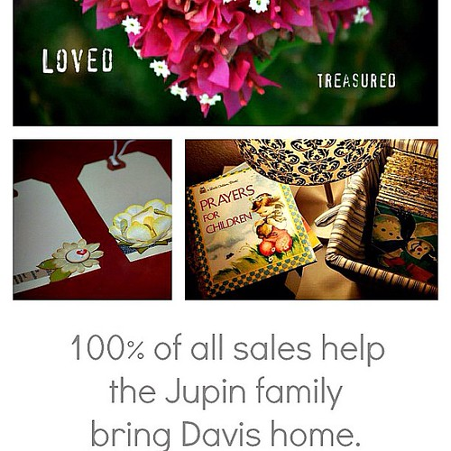 100% (yup, 100!) of sales in my etsy shop will go to help @jupemom bring her beautiful Davis home!