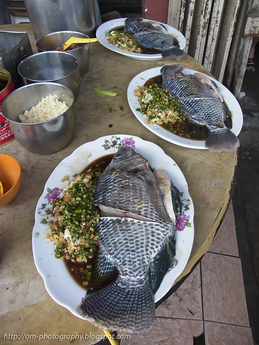 tilapia fish waiting to be steamed R0020171 copy